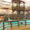 Piscina del Disney Davy Crockett