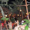 Restaurante Blue Lagoon Disney
