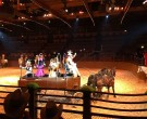 Video Buffalo Bill - Disney Village