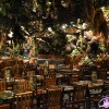 Interior en Rainforest Café