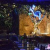Fuente en Rainforest Café
